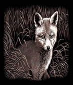 Fox Cub Copperfoil