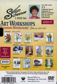 Susan Scheewe Art Workshop Series 9C 3 DVD Set Back Cover