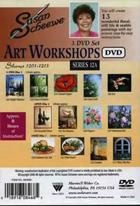 Susan Scheewe Art Workshop Series 12A 3 DVD Set Back Cover