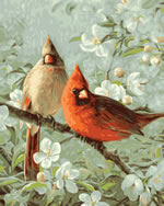 Cardinals and Cherry Blossoms Paint by Number