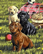 Puppy Picnic, Plaid Paint by Number