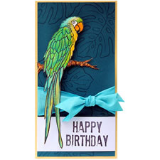 Parrot on Birthday Card