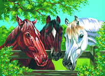 Horses, Paint by Number Set