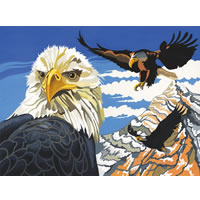 Soaring Eagles Reeves Senior Paint by Number