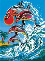 Dolphins Medium Paint by Number