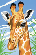 Giraffe Reeves Painting by Numbers
