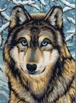 Wolf, Reeves Medium Paint by Number Set