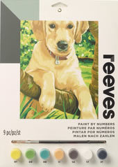 Labrador, Reeves Medium Paint by Number Set